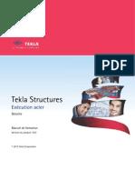 Tekla Structure Acier