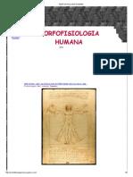 Morfofisiologia Humana