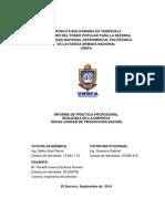 Informe Eulices Peralta Corregido