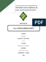 Monografia contaminación ambiental