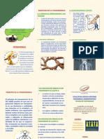 Triptico de Gobernanza (1)