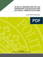 tesisUPV1679.pdf