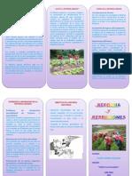 Triptico reforma agraria.docx