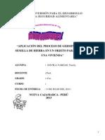 Aplicación Del Proceso de Germinación de Semilla de Hierba en Un Objeto Para Decorar Una Casa