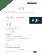 Diagonalización Algebra Lineal
