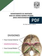 Base de Cráneo (Norma Interna)