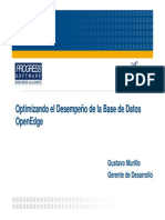 Presentacion_Rendimiento_OpenEdge_RDBMS_PDF.pdf