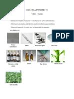 BIOLOGÍA INFORME V1