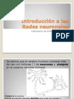 IntroduccionRNA (1)