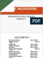 p3 neurosains