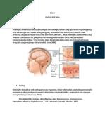 anatomi.docx