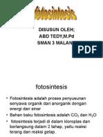 (1) fotosintesis