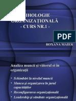 Curs Nr.1 Organizationala