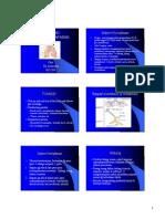 Histo Sistem Pernafasan