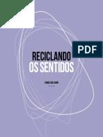 Reciclando Os Sentidos (Teoria Dos Signos)- E-book