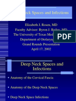 Deep NeckSpaces 2002 04 Slides