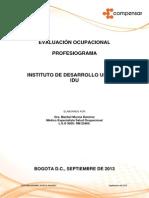 PROFESIOGRAMA IDU 2013