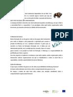 Bufalo e Ganso