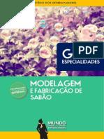 Modelagem e Fab. de Sabão