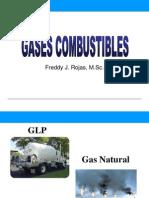 Tema123 Gases Combustibles