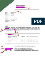 Cv Meike Verschoor PDF