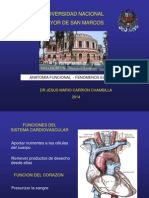 FISIOLOGIA CARDIOVASCULAR 2014II.ppt