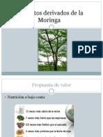 3productosderivadosdelamoringa-130415113213-phpapp02