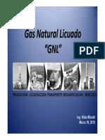 Pages 1-10  ENARSA GNL.pdf