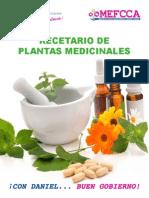 RECETAS MEDICINALES