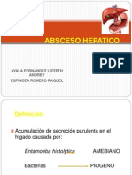 Absceso Hepatico 120809155401 Phpapp01
