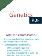 genetics - genesdnachromosomes pp
