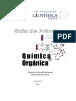 Guia Química Orgánica