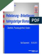 2013-03-05-biomasse-08
