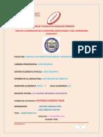 ContabilidadVII_CONT.TRIBUTOS_ LAB.N°3_ANTUNEZ.pdf