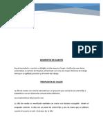 Informe Plan de Negocios