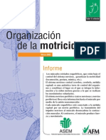 OrganizacionDeLaMotricidad