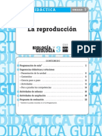 guia reproductor.pdf
