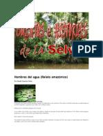 CUENTOS E HISTORIAS DE LA SELVA.docx