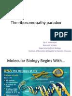 The ribosomopathy paradox.pptx