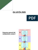 2.1-Glucolisis