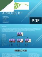 ARBOLES B+
