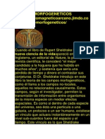Campos Morfogeneticos