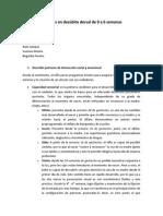 supino 0 -6 sem.pdf