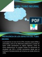 Defectos Del Tubo Neural
