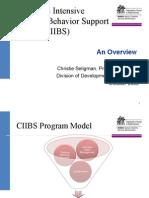 CIIBS Overview (1)