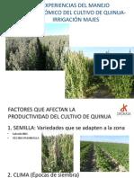 Manejo Agronomico Del Cultivo de Quinua