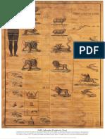 1850 Adventist Prophetic Chart