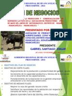 EXPOSICION CUYAO.pptx