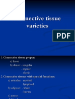 connective varieties-lp.ppt