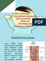 GINJAL
